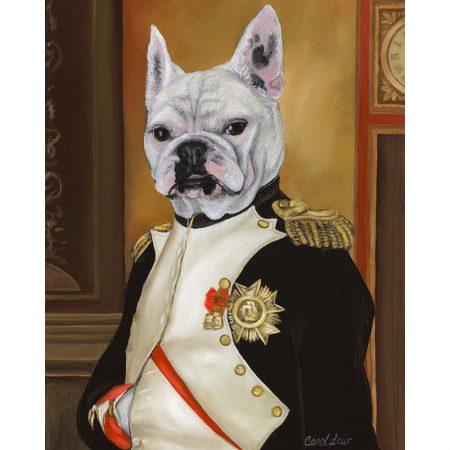 Frenchie Napoleon
